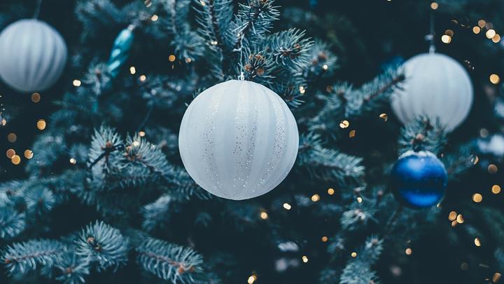 В Воронеже назвали даты открытия новогодних ёлок в Центральном парке и «Алых парусах»