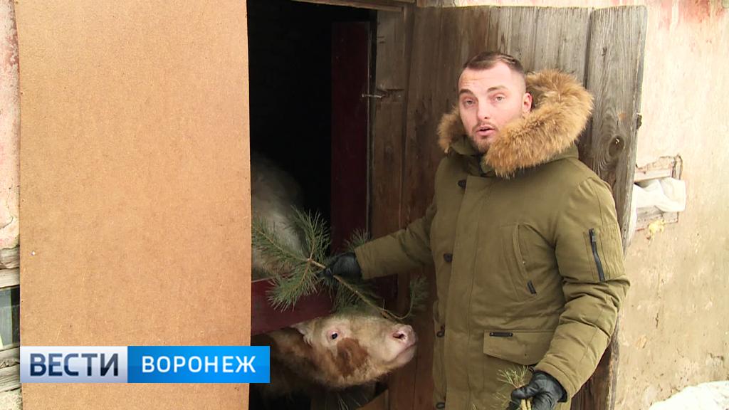 Прогноз погоды с Ильёй Савчуком на 20 – 21.01.18