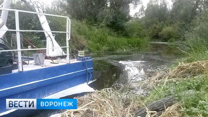 Воронежский Росприроднадзор о топливе в Усманке: «Не верим, что земснаряд не при чём»