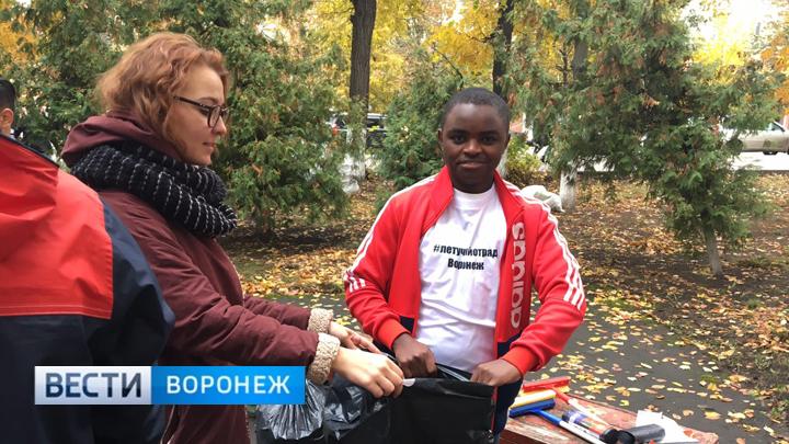 Воронежским активистам разрешили убрать только двор скандальной больницы