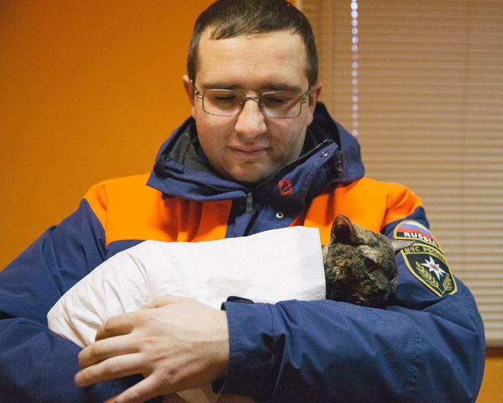 ФОТО: В Воронеже спасённая кошка обрела необычную кличку и успешно проходит лечение
