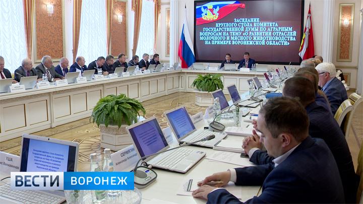 Депутаты Госдумы обсудили, чему стоит поучиться у Воронежской области другим регионам