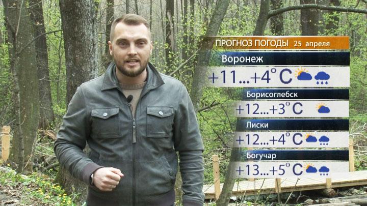 Прогноз погоды с Ильёй Савчуком на 25.04.17