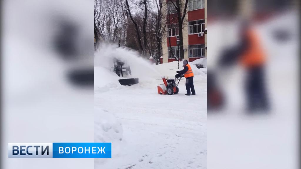 Мэрия Воронежа: «При уборке снега ни одного памятника не пострадало»