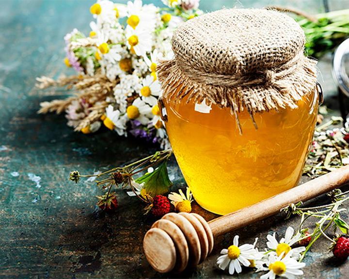 В Воронеж привезли редчайшие сорта Алтайского мёда