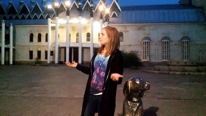 Блогер: Воронеж – российский Лас-Вегас, где собаки добрее людей