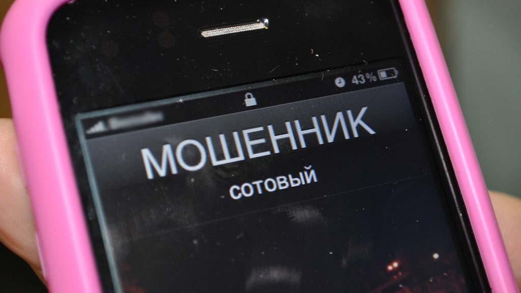 Воронежская область третья в ЦФО по количеству преступлений в сфере мошенничества