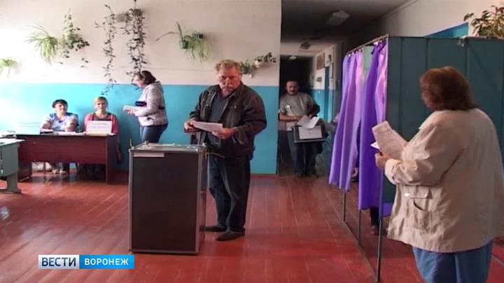 55 выборов в один день. Кого будут выбирать в Воронежской области 10 сентября