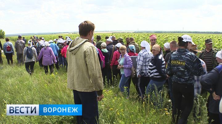Общественники начали сбор подписей в защиту отца погибшего под Воронежем мальчика