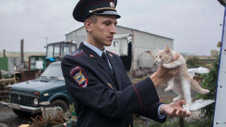 Избившего «Народного участкового» Воронежской области депутата отправили под домашний арест