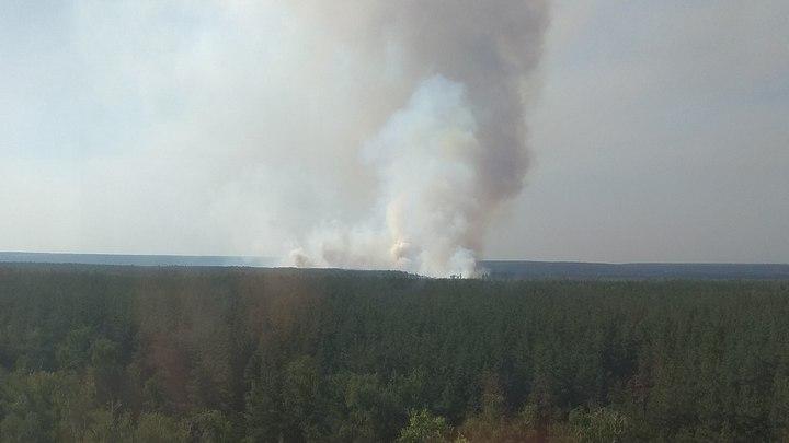 Неменее 70 спасателей гасят природный пожар вВоронеже
