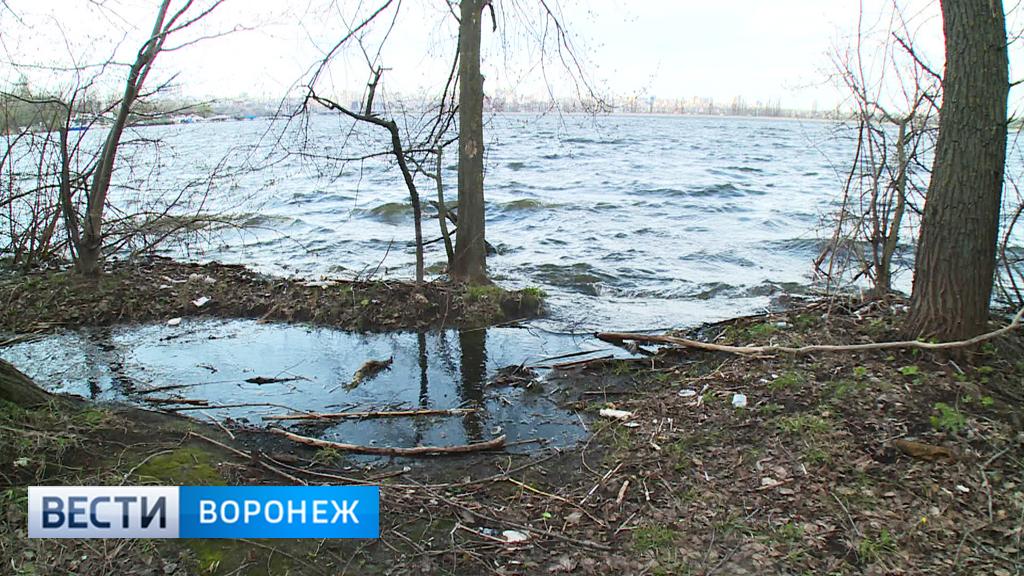 Следователи выясняют личность человека, чьи останки найдены в Воронежском водохранилище