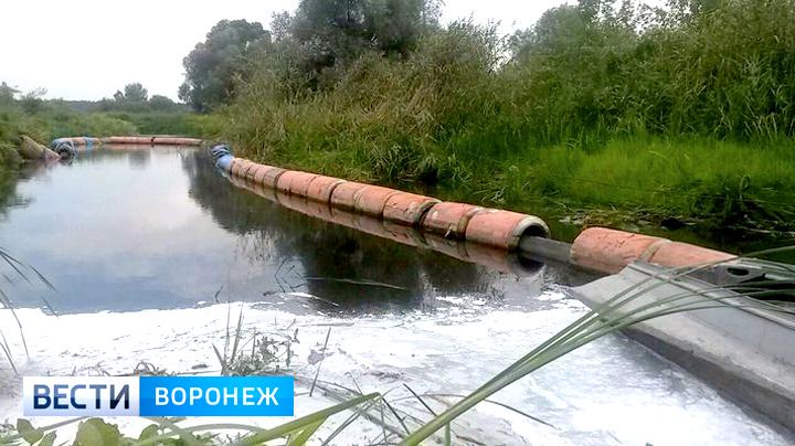 Росприроднадзор нашёл виновных в разливе топлива на Усманке под Воронежем