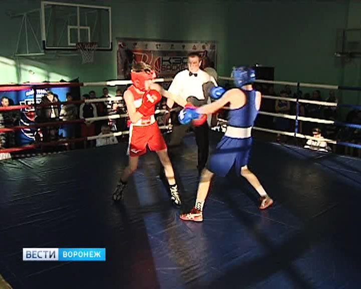 В Воронеже стартовали отборочные соревнования первенства России по боксу