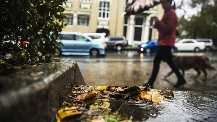 Последние выходные октября не порадуют жителей Воронежской области хорошей погодой