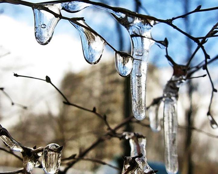 В Воронежскую область первые дни весны придут вместе с дождями