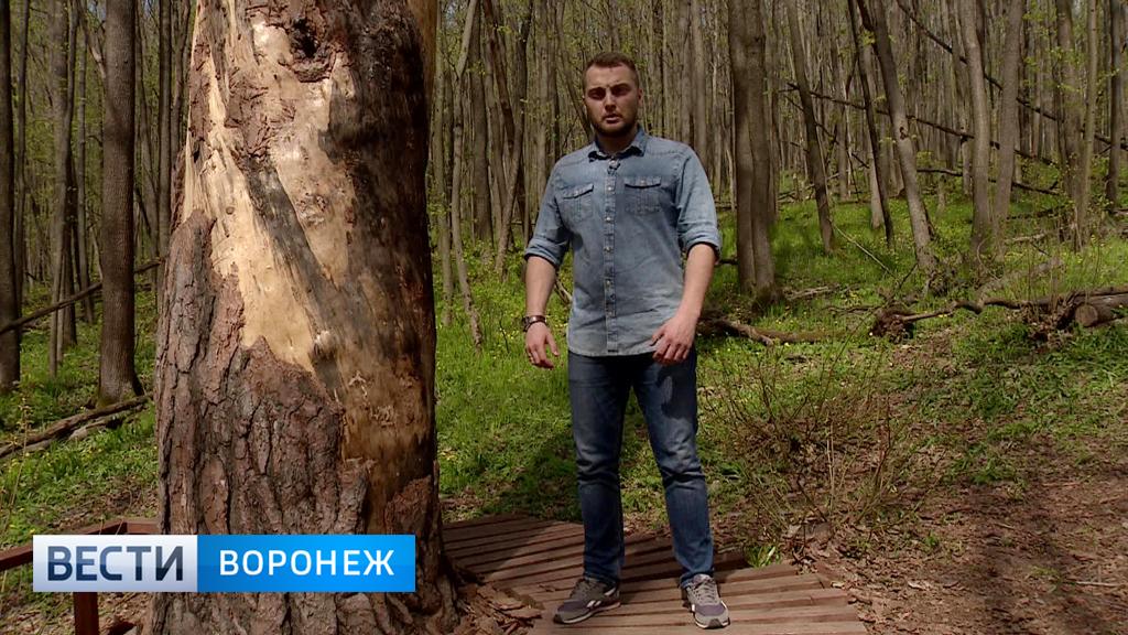 Прогноз погоды с Ильёй Савчуком на 28.04.17 – 01.05.17