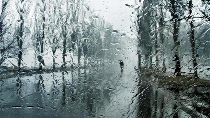 В Воронежской области на этой неделе ожидаются потепление до +7 градусов и дожди