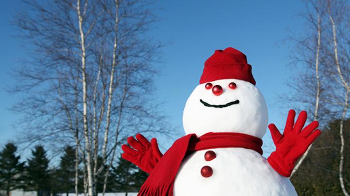 В выходные в Воронежской области будет морозная погода