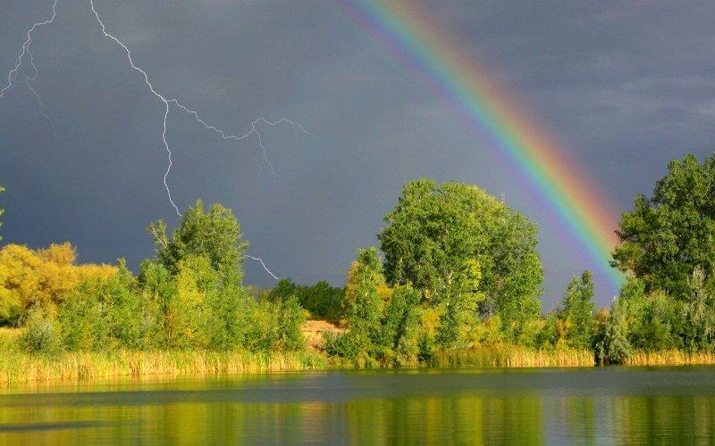 В Воронежской области на выходные синоптики обещают дожди и грозы