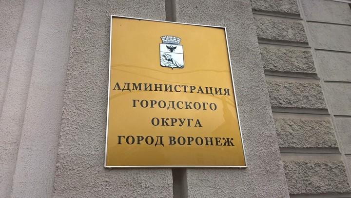 Безработный или директор кадрового агентства. Кто станет мэром Воронежа