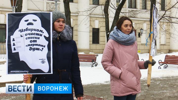 Воронежцы пикетом призвали избавиться от «мёртвых душ» на выборах