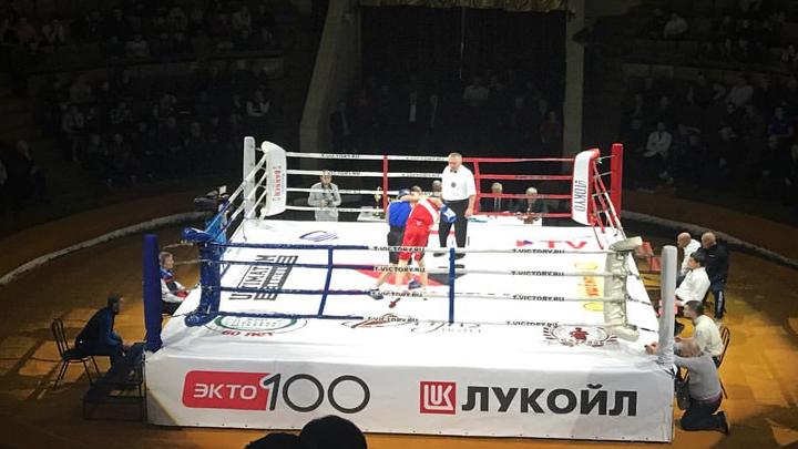 В столице Черноземья прошёл турнир, посвящённый 95-летию воронежского бокса