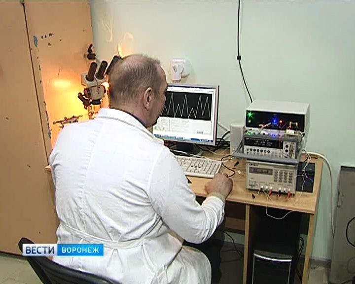 Воронежские учёные близки к созданию вечной батарейки