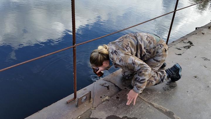 Вводоёмах Воронежского заповедника отыскали смертельно рискованное для людей вещество