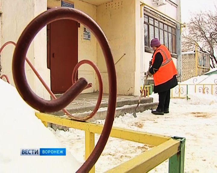 Воронежские чиновники предлагают решить проблему дефицита дворников за счёт горожан