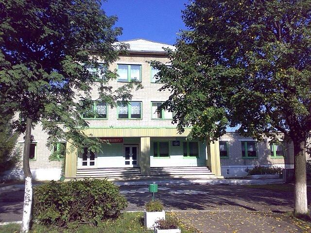 Восьмилетняя ученица погибла натерритории школы под Воронежем