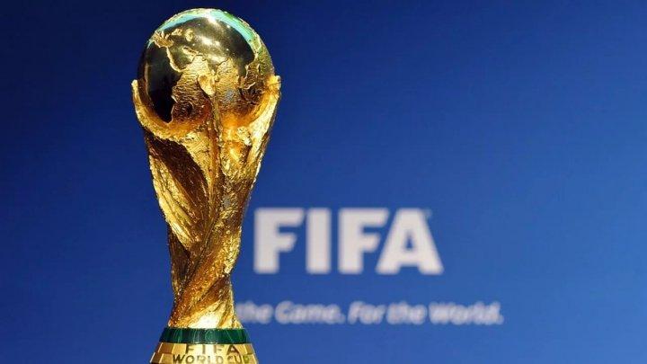 Кубок мира по футболу в Воронеже покажут на трёх площадках