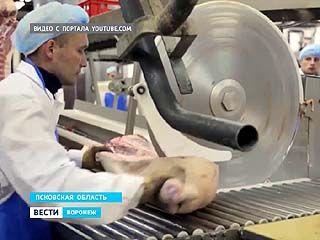 Африканскую чуму свиней нашли в продукции крупного мясокомбината - она продается и в Воронеже