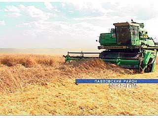 Аграрии из Новоусманского района отметили окончание уборки зерновых культур