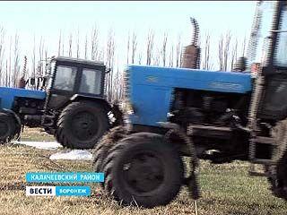 Аграрии Воронежской области готовят озимые к предстоящей уборке