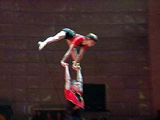 Акробаты выступили в цирке