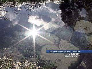 Акция, посвященная Всемирному дню воды, откроется в Воронеже