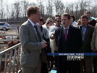 Алексей Гордеев ищет инвесторов, готовых вложить деньги в животноводство