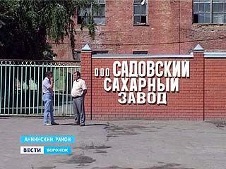 """Алексей Гордеев: """"Садовский сахарный завод будет работать"""""""