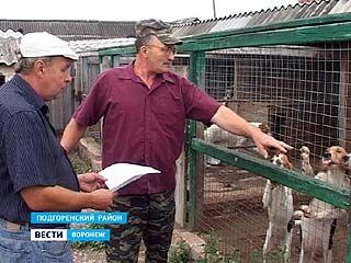 Анатолий Кудинов более 10 лет занимается разведением русских пегих