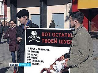 Антимеховой митинг в Воронеже собрал 10 человек