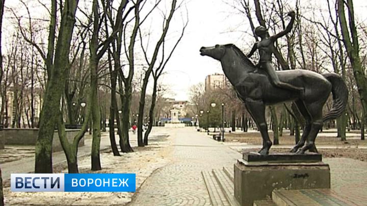 Воронежцев зовут выбрать городскую площадку, которую благоустроят в 2018 году