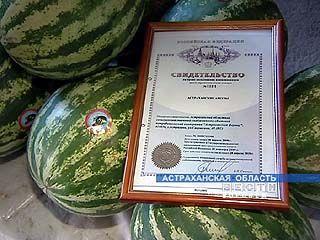 Астраханские арбузы отправились на рынки России