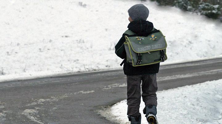 Жительница Воронежа: «Моего ребёнка увезли от школы!»