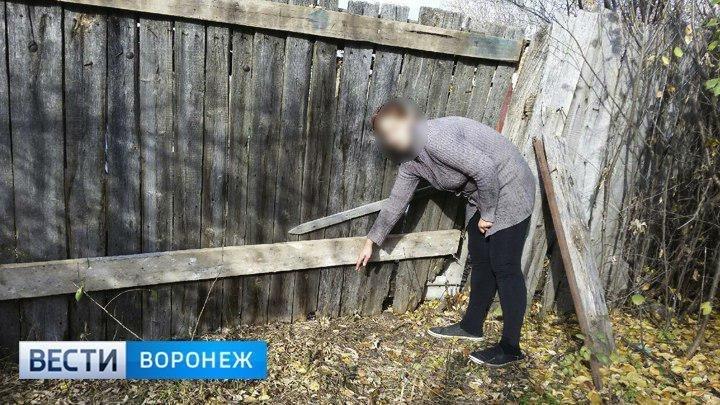 В Воронежской области будут судить мать, бросившую новорождённую дочь на улице