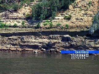 Берег реки Дон, на котором расположен Павловск, продолжает разрушаться