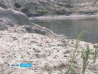 Берега Дона в районе Павловска собираются укрепить