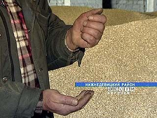 Богатый урожай зерна этого года в Воронежской области уходит за бесценок