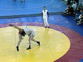 Более 150 спортсменов боролись на турнире по самбо