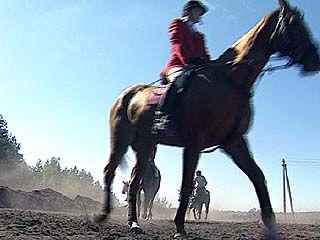 Более 50 участников собрались на открытом чемпионате по конному спорту